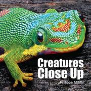 CREATURES CLOSE UP by Gillian Watts