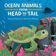 OCEAN ANIMALS FROM HEAD TO TAIL by Stacey Roderick