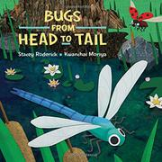 BUGS FROM HEAD TO TAIL by Stacey Roderick