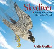 SKYDIVER by Celia Godkin
