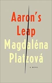 AARON'S LEAP by Magdaléna Platzová