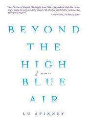BEYOND THE HIGH BLUE AIR by Lu  Spinney