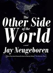 Book Cover for THE OTHER SIDE OF THE WORLD