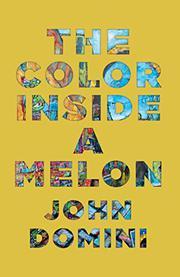THE COLOR INSIDE A MELON by John Domini