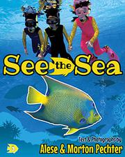 SEE THE SEA by Alese Pechter