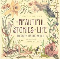 THE BEAUTIFUL STORIES OF LIFE