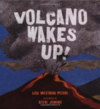 VOLCANO WAKES UP!