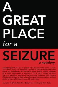 A GREAT PLACE FOR A SEIZURE