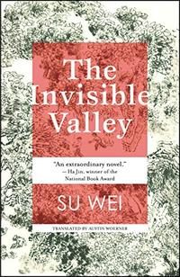 THE INVISIBLE VALLEY