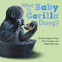 WHAT IS BABY GORILLA DOING?
