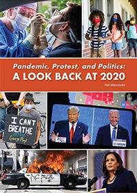 PANDEMIC, PROTEST, AND POLITICS