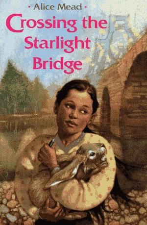 CROSSING THE STARLIGHT BRIDGE