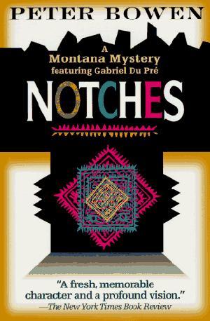 NOTCHES