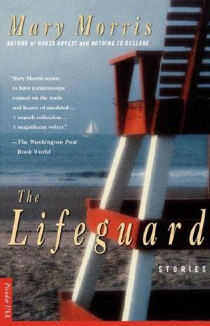 THE LIFEGUARD: Stories