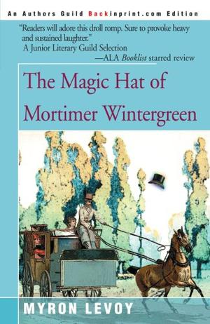 THE MAGIC HAT OF MORTIMER WINTERGREEN