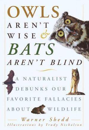 OWLS AREN'T WISE AND BATS AREN'T BLIND