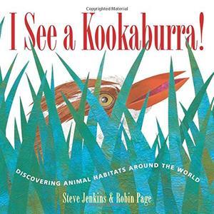 I SEE A KOOKABURRA!