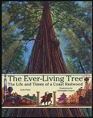 THE EVER-LIVING TREE