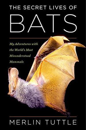 THE SECRET LIVES OF BATS