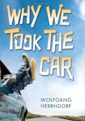 WHY WE TOOK THE CAR