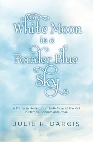 White Moon in a Powder Blue Sky
