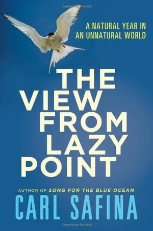 THE VIEW FROM LAZY POINT