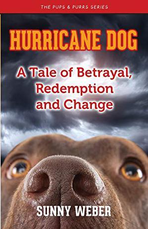 HURRICANE DOG