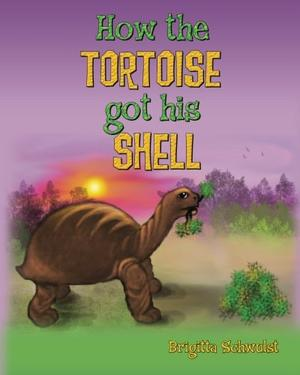 HOW THE TORTOISE GOT HIS SHELL