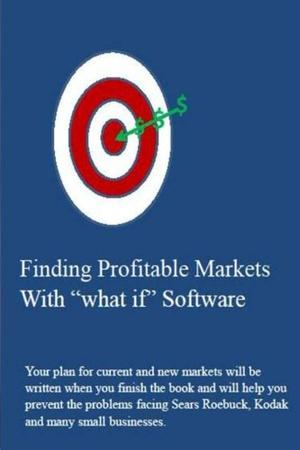 """Finding Profitable Markets with """"what if"""" Software"""