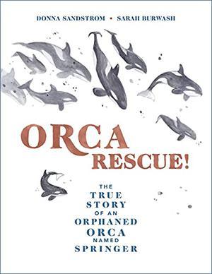 ORCA RESCUE!