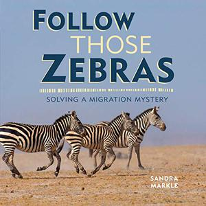 FOLLOW THOSE ZEBRAS