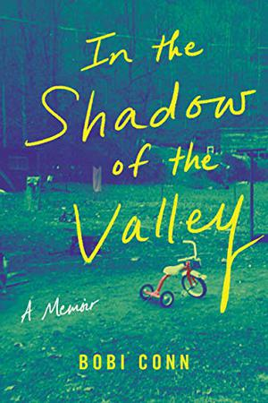 IN THE SHADOW OF THE VALLEY