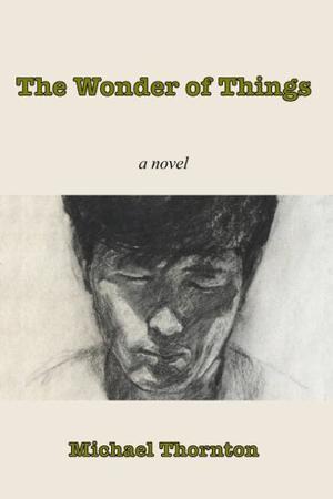 THE WONDER OF THINGS
