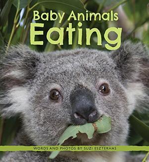 BABY ANIMALS EATING