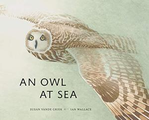 AN OWLAT SEA