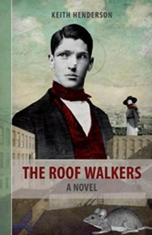 THE ROOF WALKERS