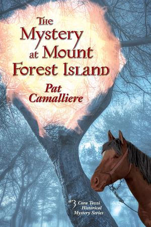 THE MYSTERY AT MOUNT FOREST ISLAND