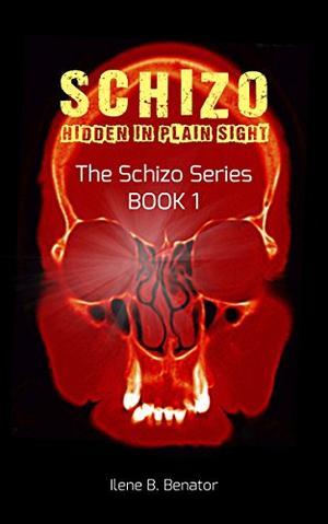 Schizo: Hidden in Plain Sight