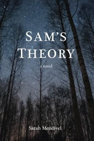SAM'S THEORY