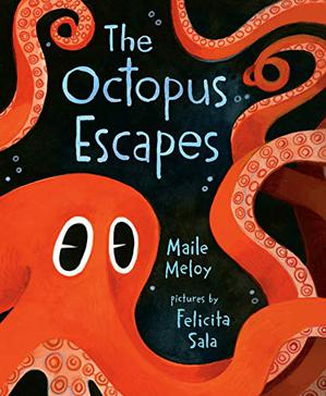 THE OCTOPUS ESCAPES
