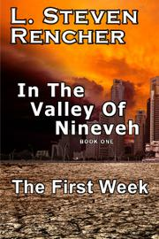 Cover art for IN THE VALLEY OF NINEVEH