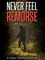 Never Feel Remorse by L.S. Miller