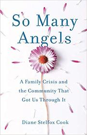 SO MANY ANGELS by Diane Stelfox  Cook