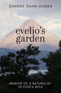 EVELIO'S GARDEN